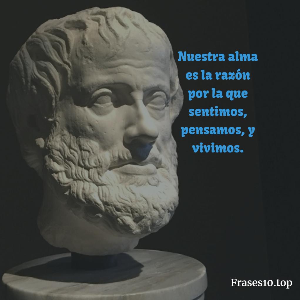 Frases De Aristóteles Cortas Para Pensar Frases10top