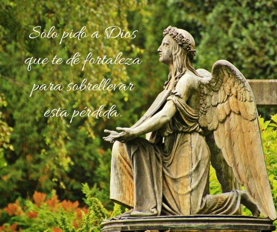 Frases De Condolencia Y Pésame Para Un Funeral Familiar Frases 10 Top