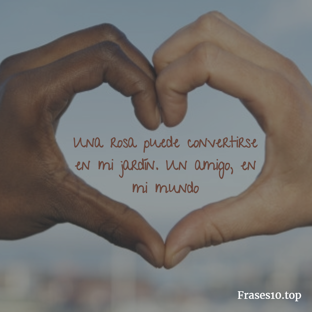 Amor Mutuo Frases Tumblr
